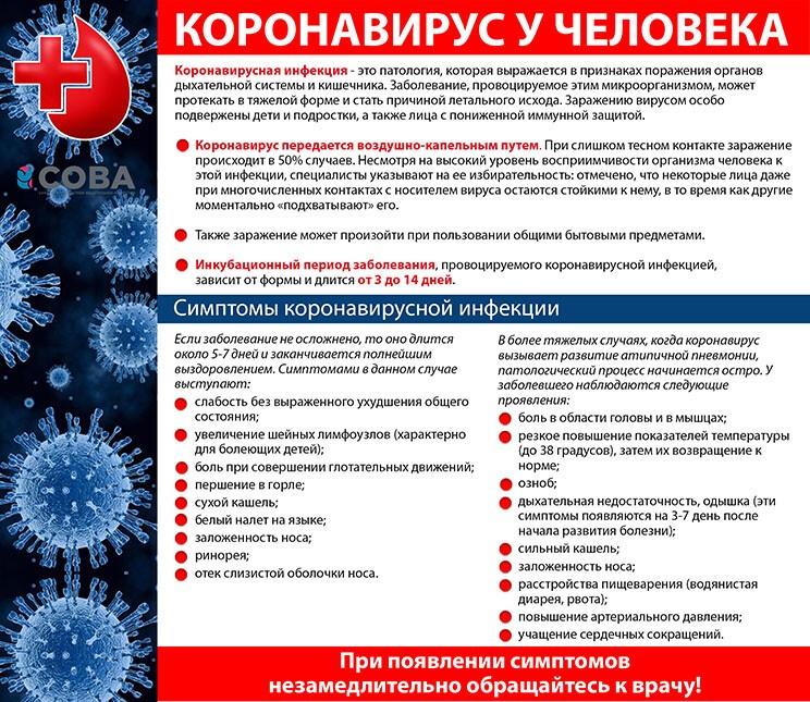 """Картинки по запросу """"профилактика коронавируса"""""""