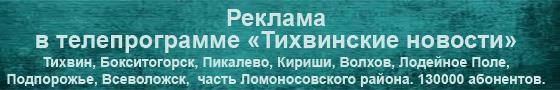 ТВ-реклама в Ленинградской области